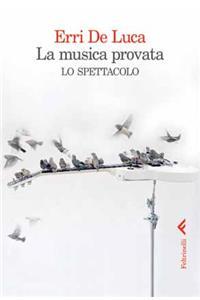 NoteVerticali.it_Erri De Luca_La Musica_Provata_Lo_Spettacolo