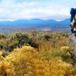 Wild: Cheryl Strayed e il viaggio alla scoperta di sè