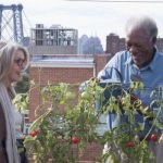 Ruth & Alex: un film a cui non bastano New York, Morgan Freeman e Diane Keaton