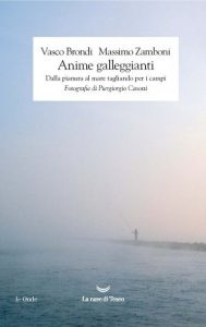 NoteVerticali.it_Anime_Galleggianti_Vasco_Brondi_Massimo_Zamboni_cover