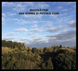 NoteVerticali.it_Niccolo_Fabi_Una_somma_di_piccole_cose_cover