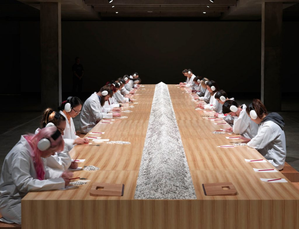 "Marina Abramovic, ""Counting the rice"""